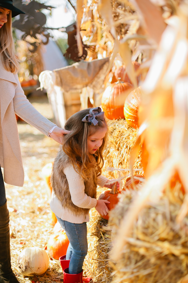 pumpkinpatch-family-pictures