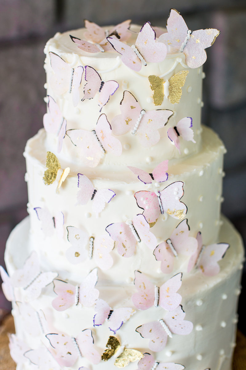 butterfly-birthdayparty-cake