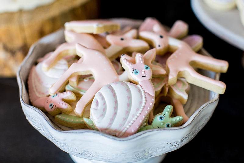 fairygarden-birthdayparty-cookies